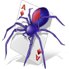 spider with card