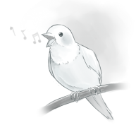 image of bird singing